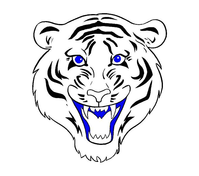 How to Draw Tiger Face: Step 19