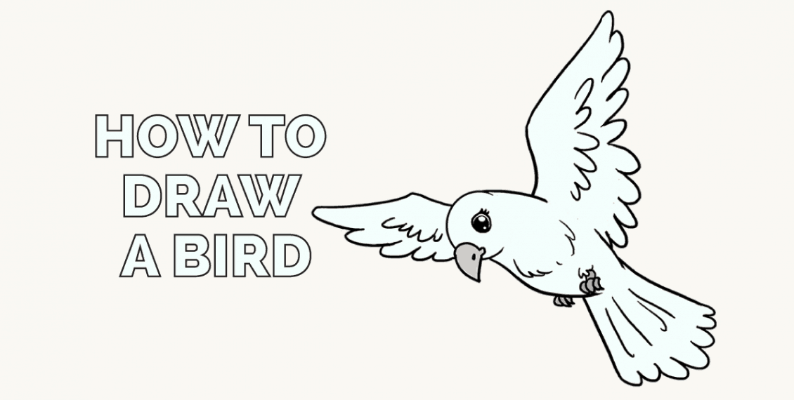 How to Draw a Bird: Featured image