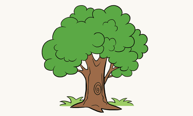 How to Draw a Cartoon Tree | Easy Step by Step Drawing Guides