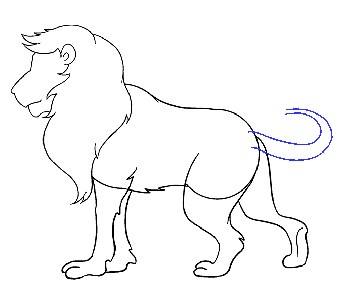 How to Draw Lion: Step 16
