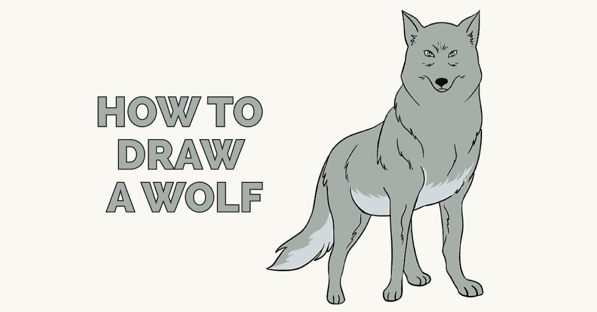 How to Draw a Wolf: Featured image