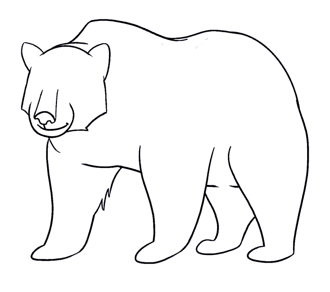 How to Draw Bear: Step 16