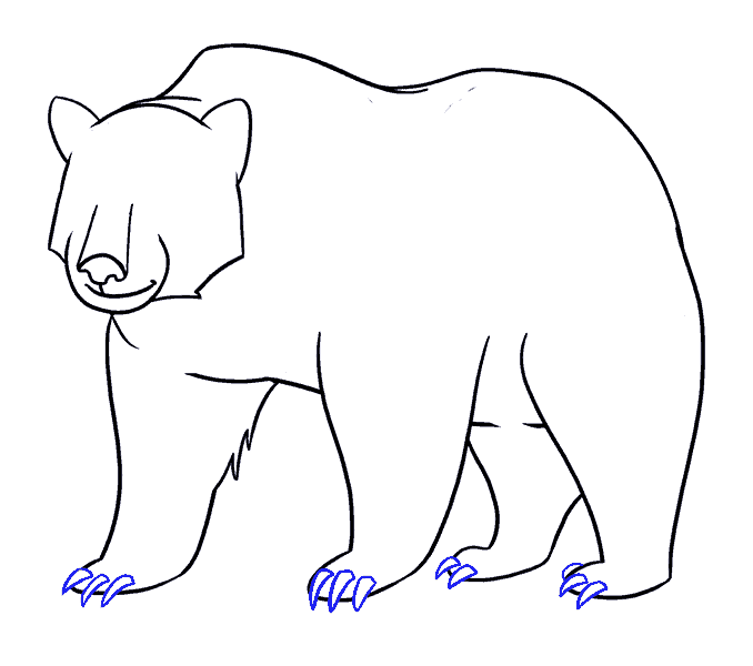 How to Draw Bear: Step 17