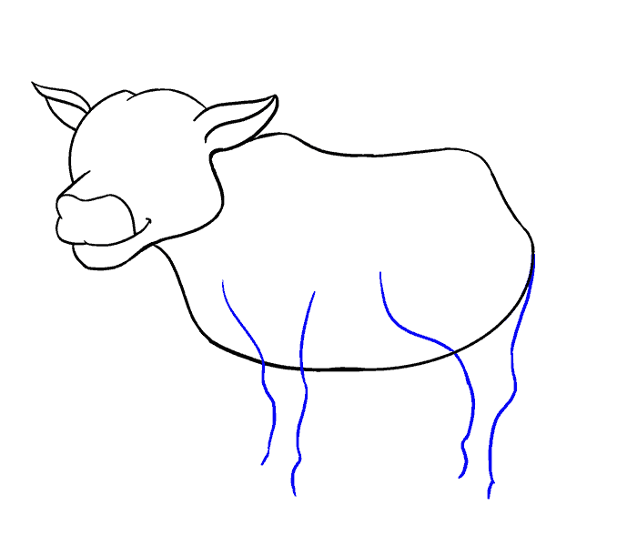 How to Draw Cow: Step 12