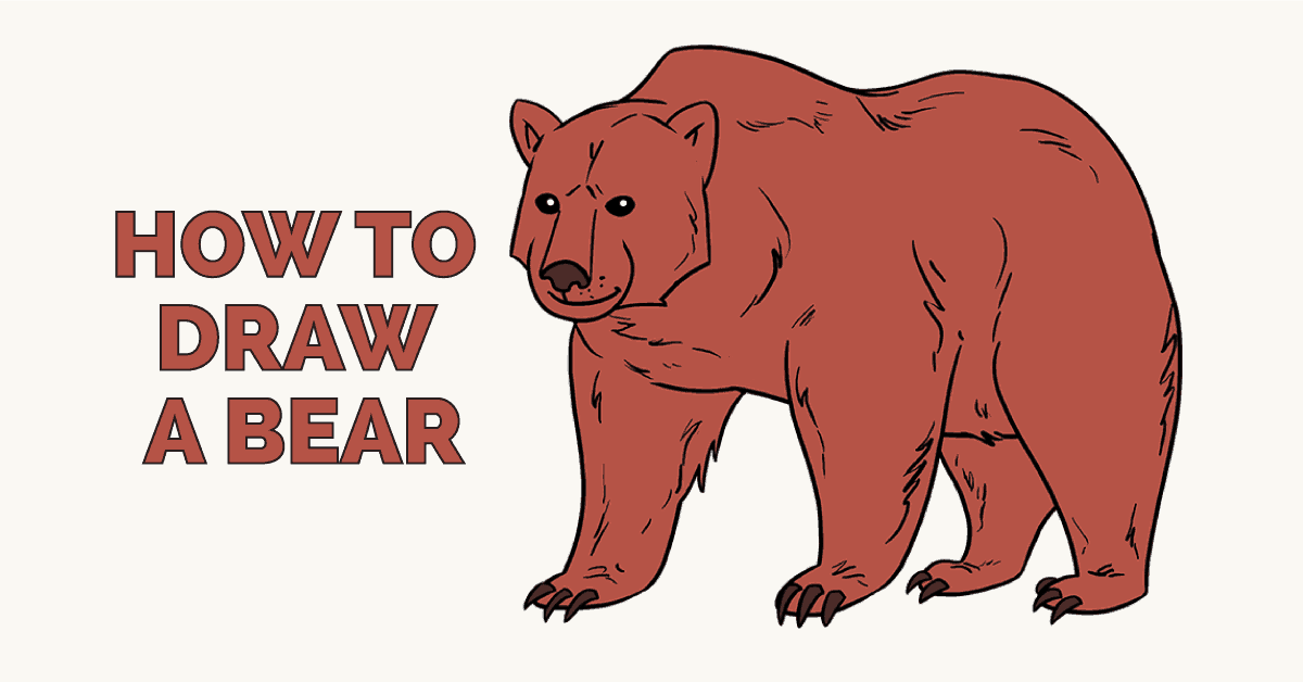 How to Draw a Bear: Featured Image