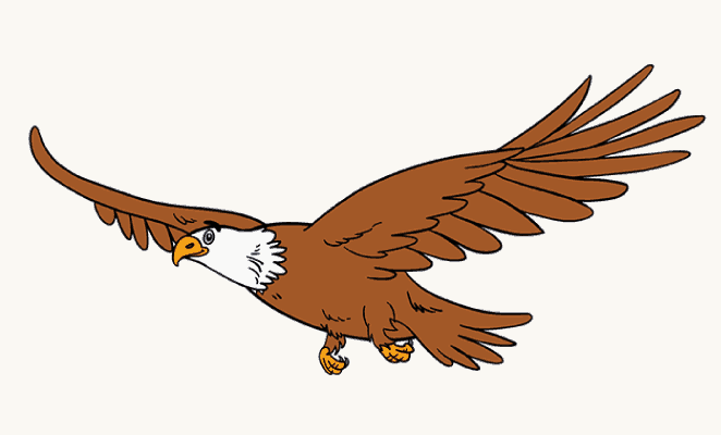 https://easydrawingguides.com/wp-content/uploads/2017/03/how-to-draw-an-eagle_tutorial-header.png Eagle Drawing Easy