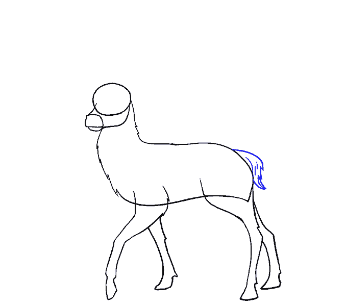 How to Draw Deer: Step 10