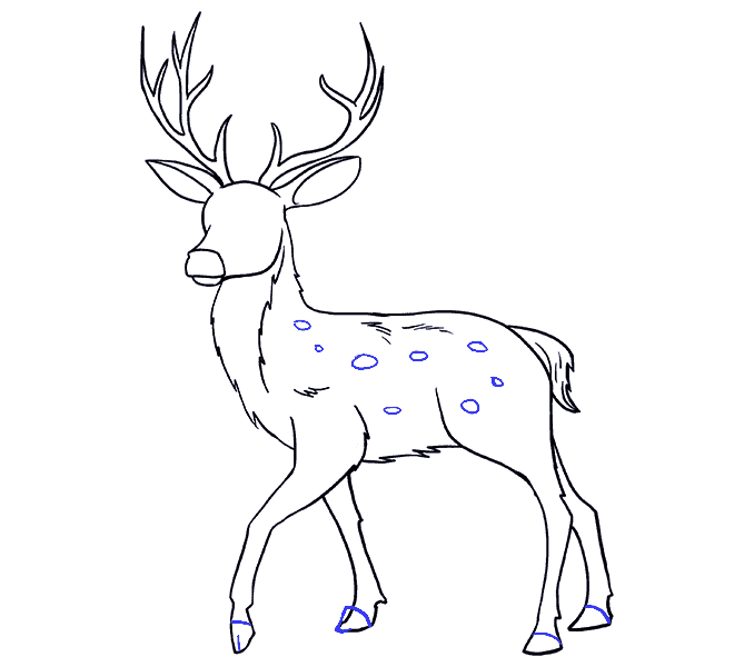 How to Draw Deer: Step 18