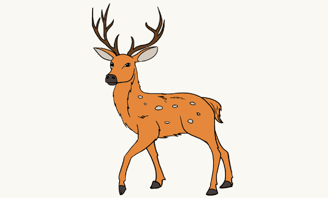 How to draw a deer header image