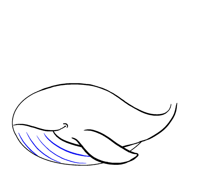 How to Draw Whale: Step 11