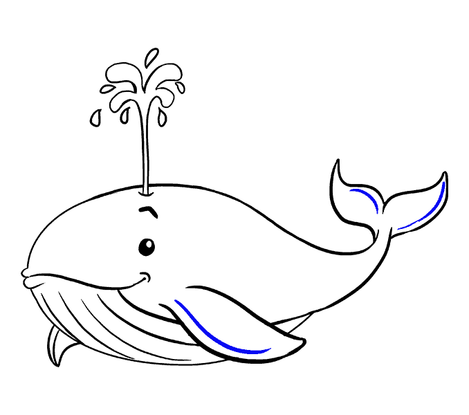 How to Draw Whale: Step 19