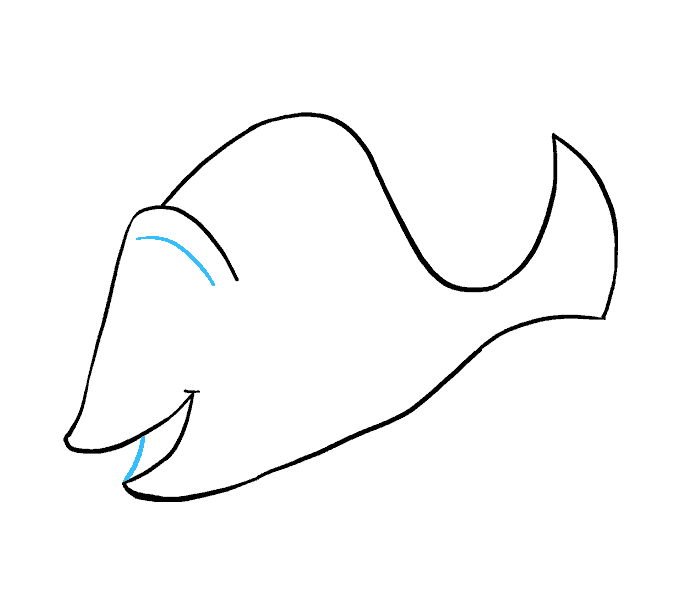 How to Draw Dory: Step 7