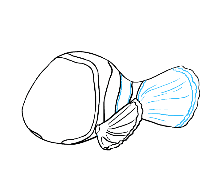 How to Draw Nemo: Step 10