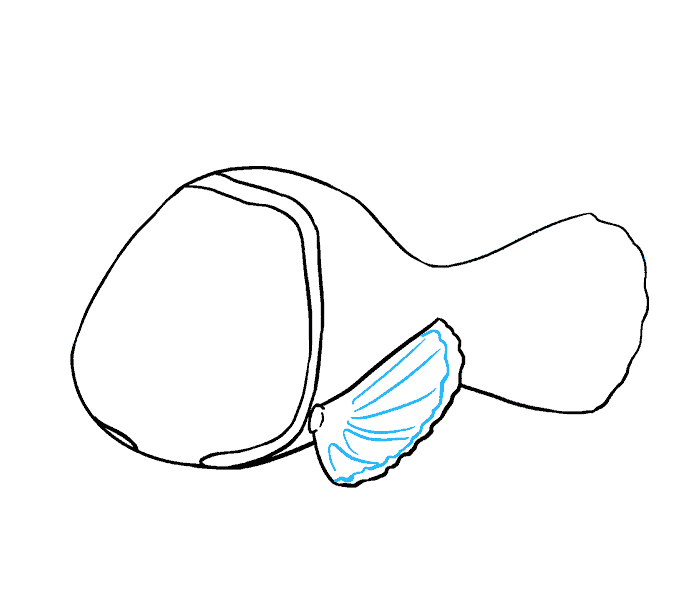 How to Draw Nemo: Step 8
