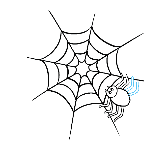 How to Draw Spider Web with Spider: Step 15