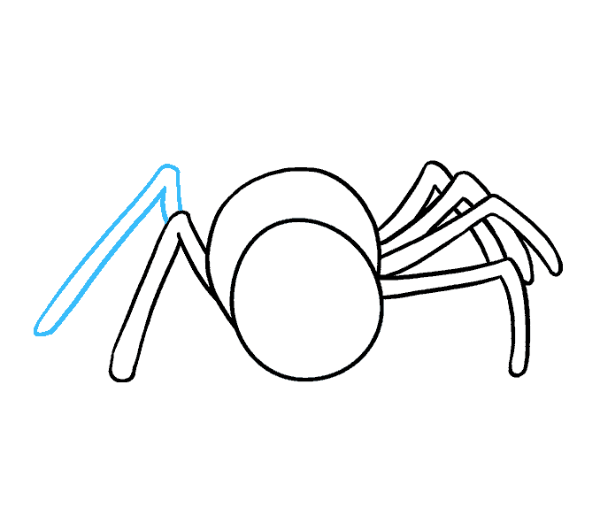 How to Draw Cartoon Spider: Step 8