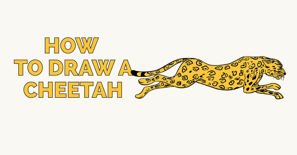 How to Draw a Cheetah: Featured image
