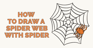 How to Draw a Spider Web: Featured image