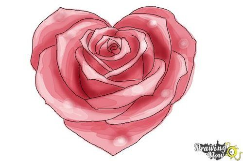 Drawing tutorial: How to Draw a Heart Shaped Rose