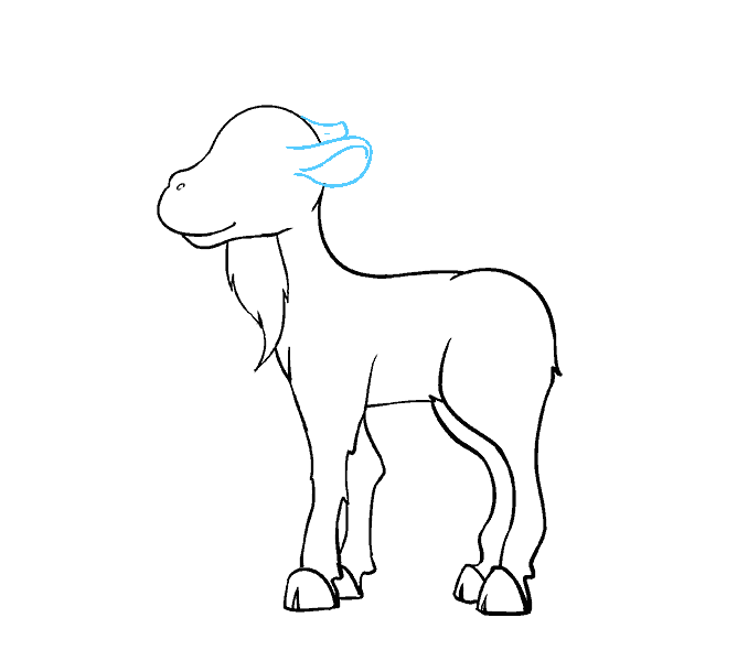 How to Draw Goat: Step 14