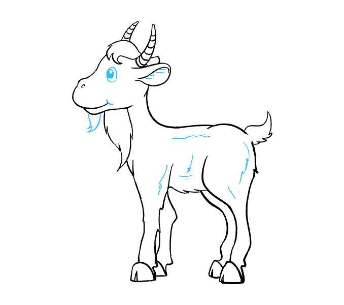 How to Draw Goat: Step 19