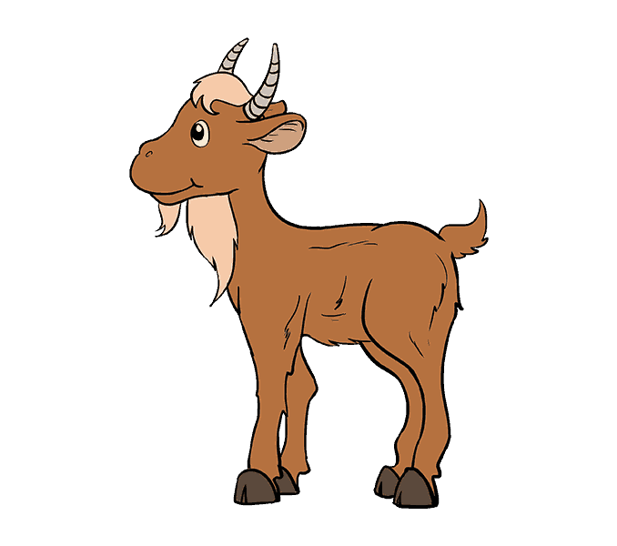 How to Draw Goat: Step 20