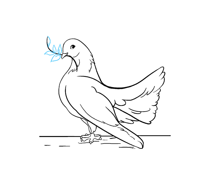 How to draw a dove Step: 19