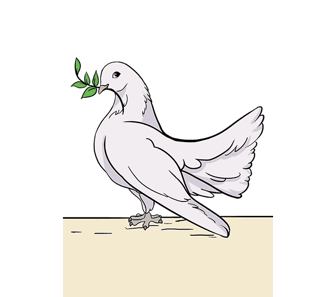 How to draw a dove Step: 20