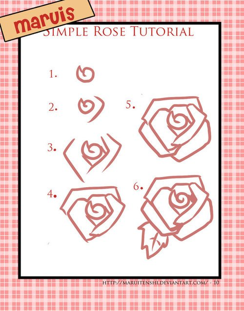Drawing tutorial: How to Draw a Linear Rose