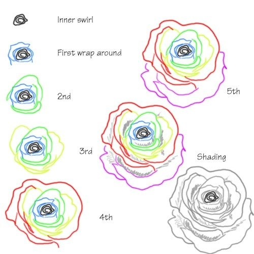 Drawing tutorial: How to Draw a Rose Using a Squiggly Lines
