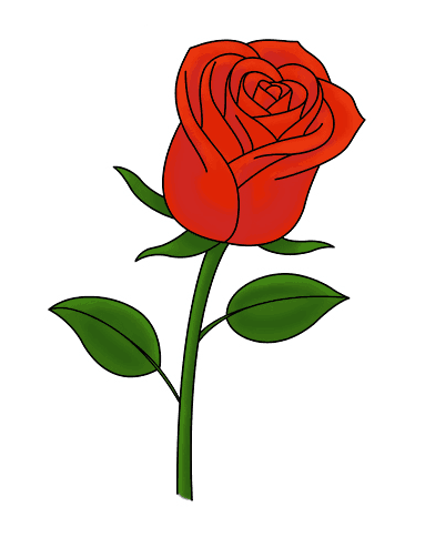 Drawing tutorial: How to Draw a Single Rose
