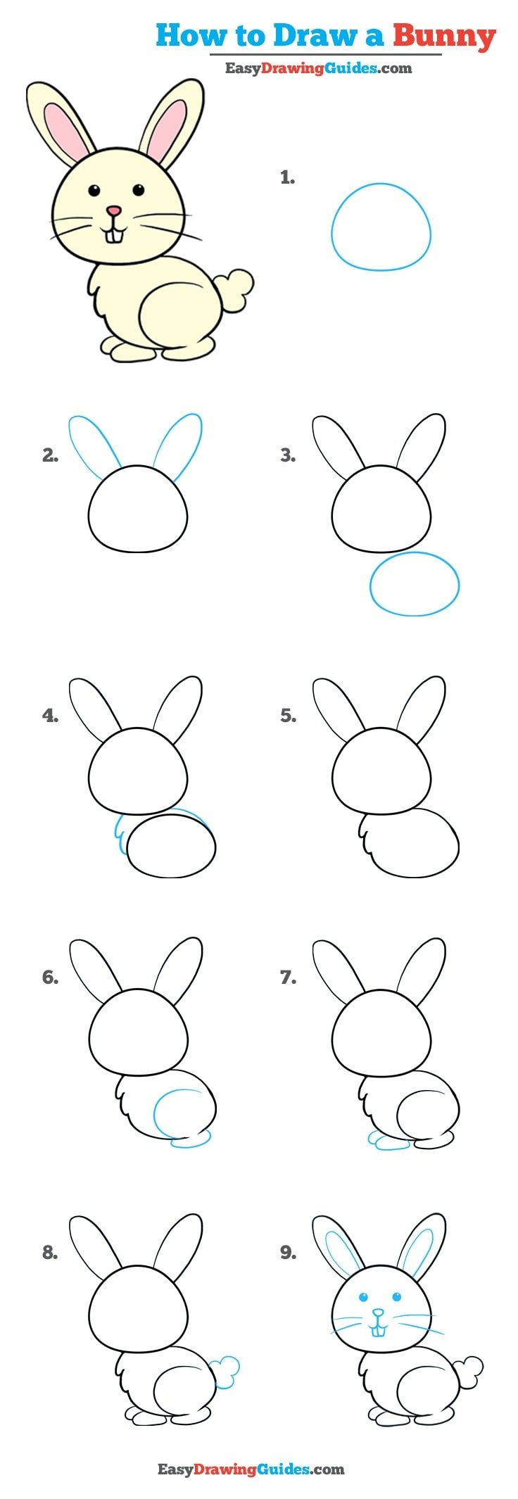 How to Draw a Bunny Rabbit: 1-page drawing tutorial