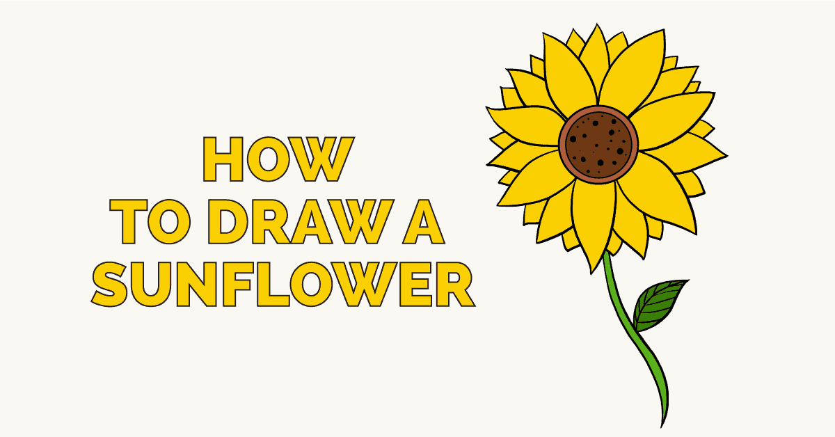 How to Draw a Sunflower - Really Easy Drawing Tutorial