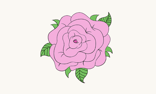 Drawing tutorial: How To Draw a Rose Flower