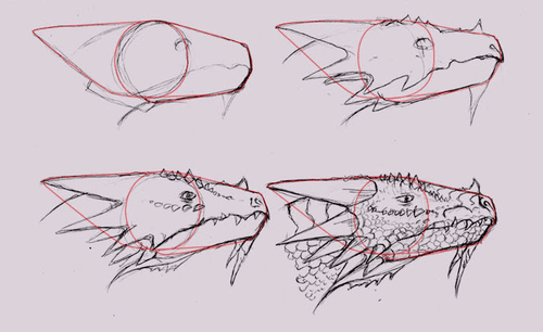 Drawing tutorial: How to Draw Dragon Heads in Side View