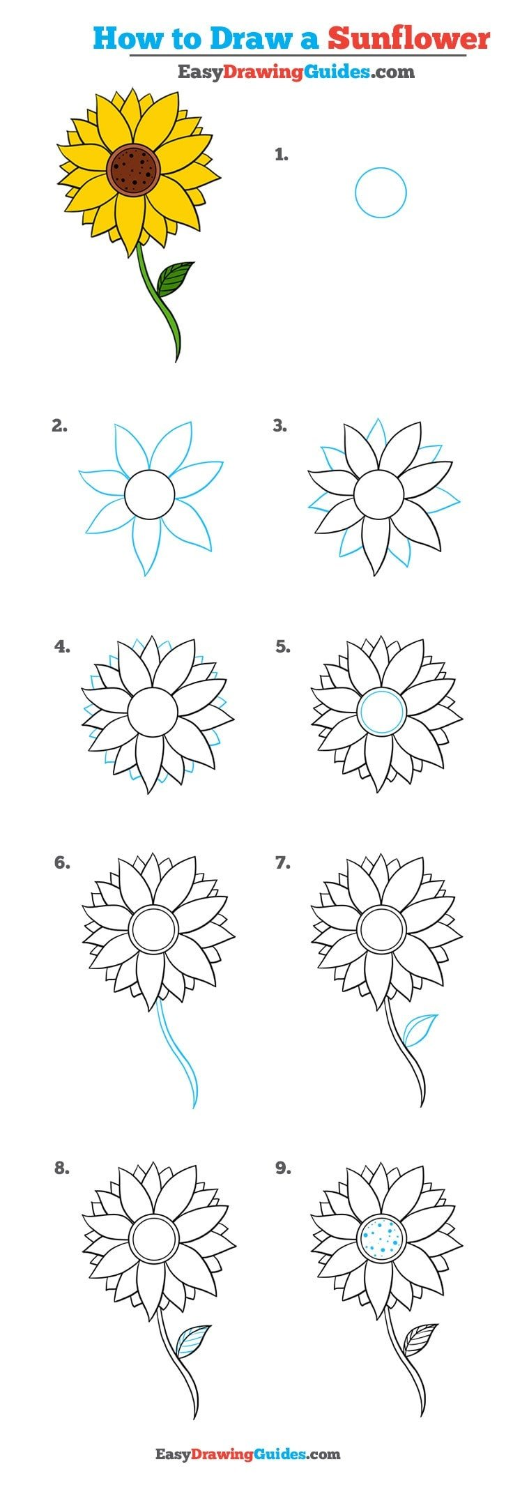 How to Draw a Sunflower: Really Easy Drawing Tutorial