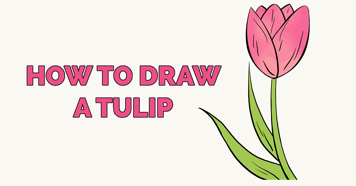 how to draw a tulip really easy drawing tutorial