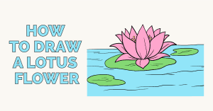 How to draw a lotus flower - featured image