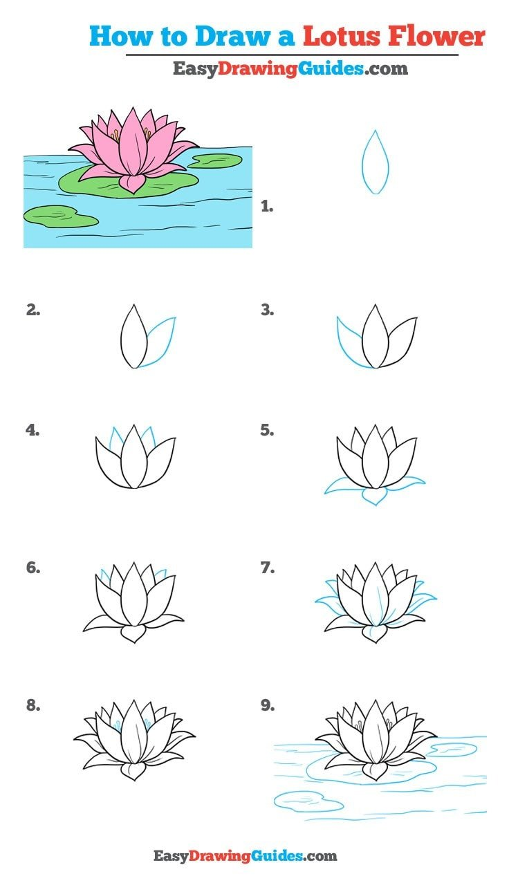 How to draw a lotus flower - step by step drawing tutorial