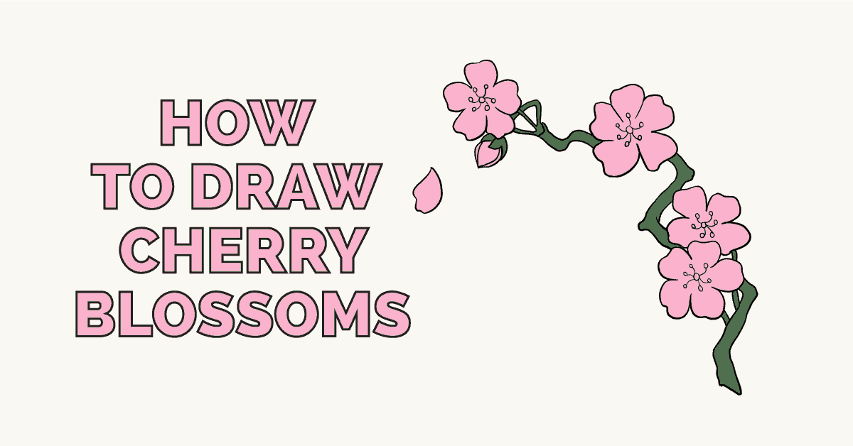 how to draw cherry blossoms really easy drawing tutorial