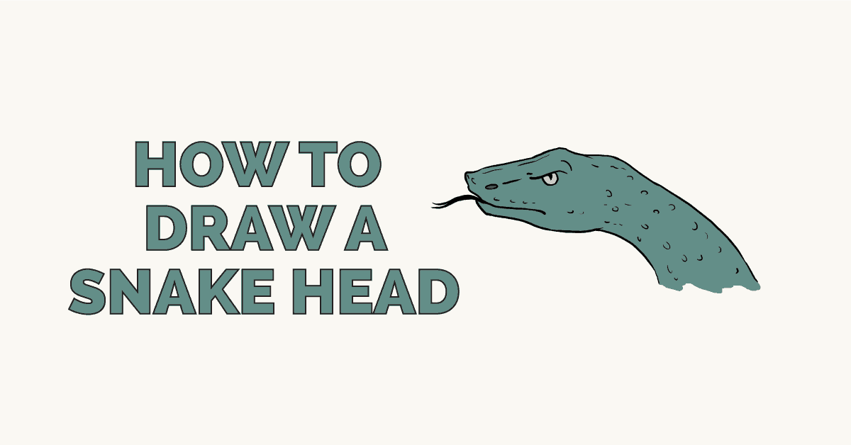 How to draw a snake head featured image