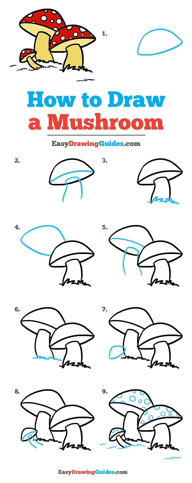 How to Draw Mushroom