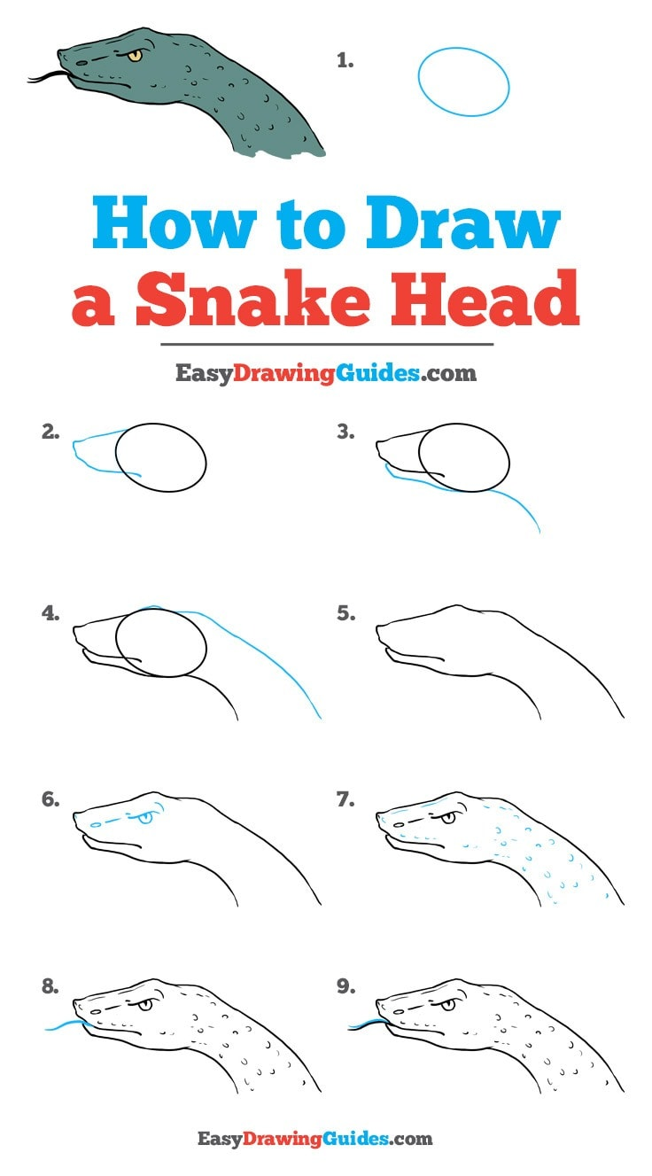 How to Draw Snake Head
