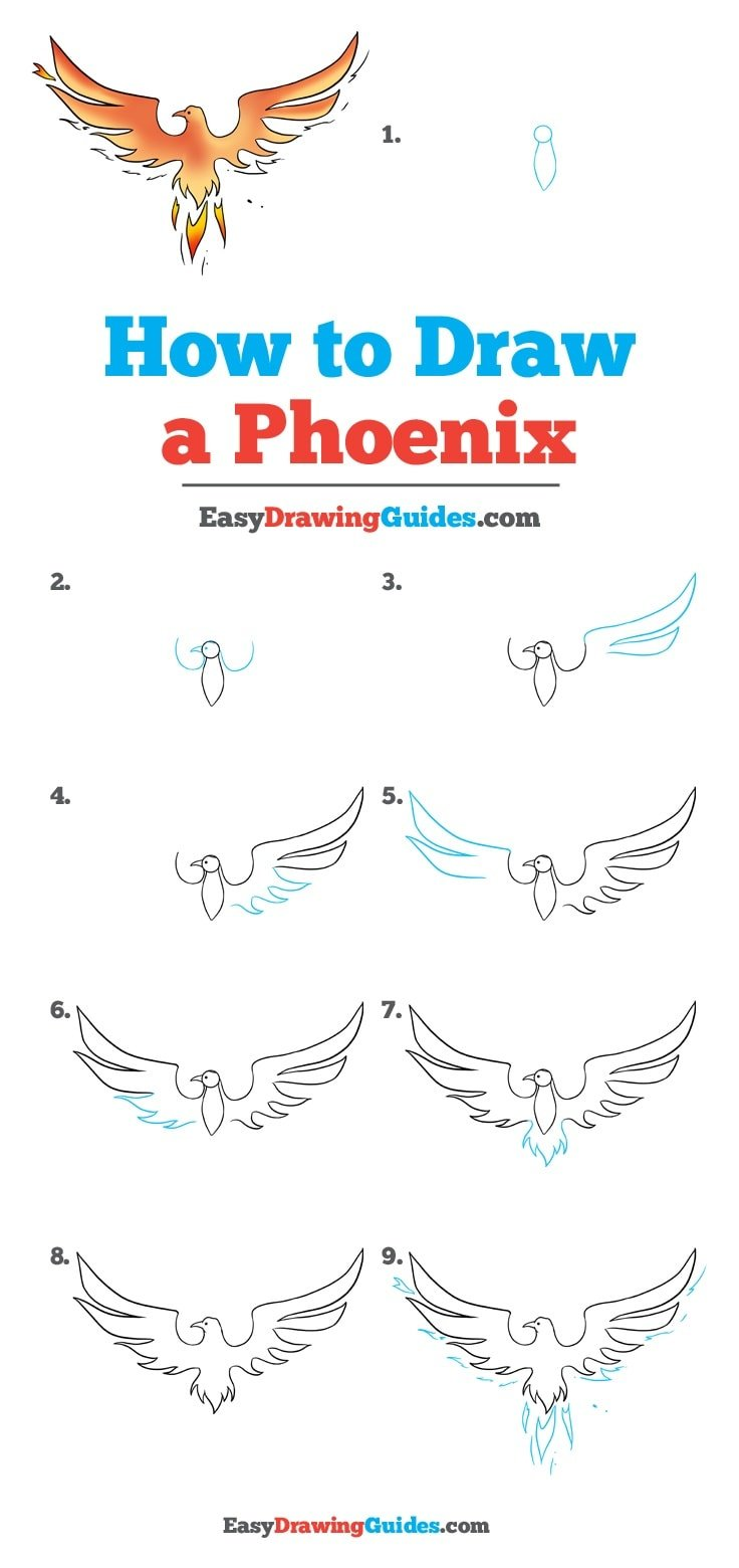 How to Draw Phoenix
