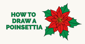 How to draw a poinsettia featured image