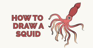 How to draw a squid featured image