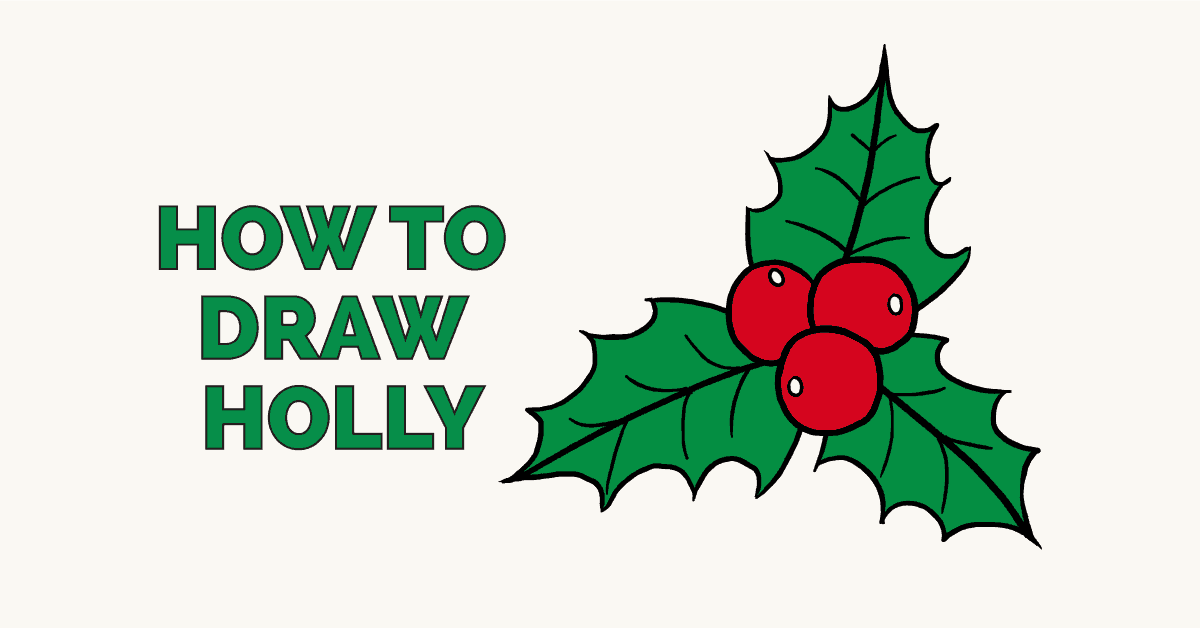 How to draw holly featured image