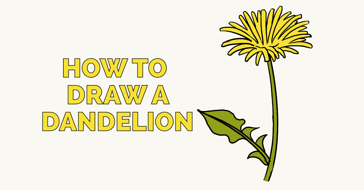 how to draw a dandelion really easy drawing tutorial