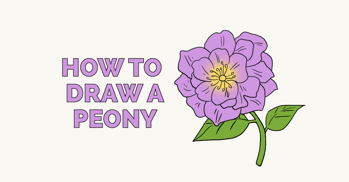 How to Draw a Peony: Featured Image