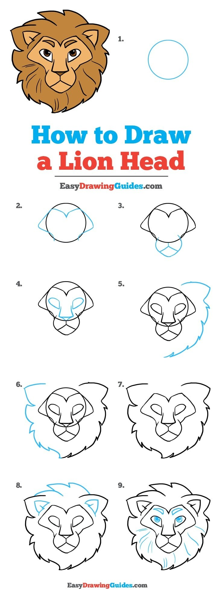 How to Draw a Lion Head: Step by Step tutorial